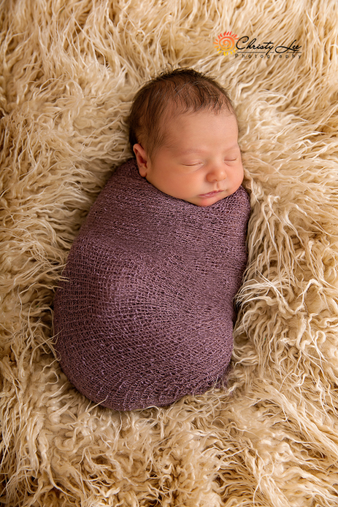 newborn baby photos in a studio